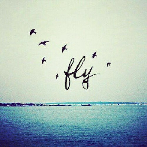 Flying Quotes: Yourhappyplaceblog