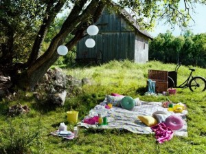 A-Picnic-in-the-Park-2012-IKEA-Summer-Inspiration-Decorating-and-Relaxing.jpeg-570x427