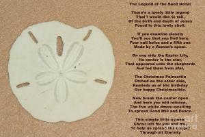 legend-of-the-sand-dollar-april-wietrecki