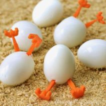 hatching-hard-boiled-eggs-easter-recipes3