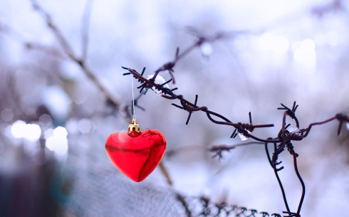 heart-ornament-hanging-from-a-wire-fence-3840x2400-wide-wallpapers-net
