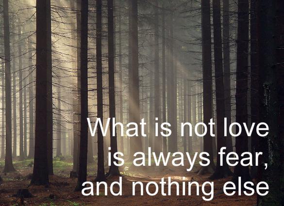 love-fear