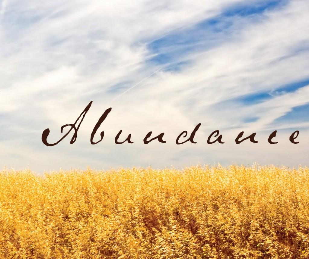 abundance-42-1024x860