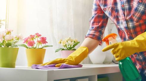 11127_Spring_Cleaning_800