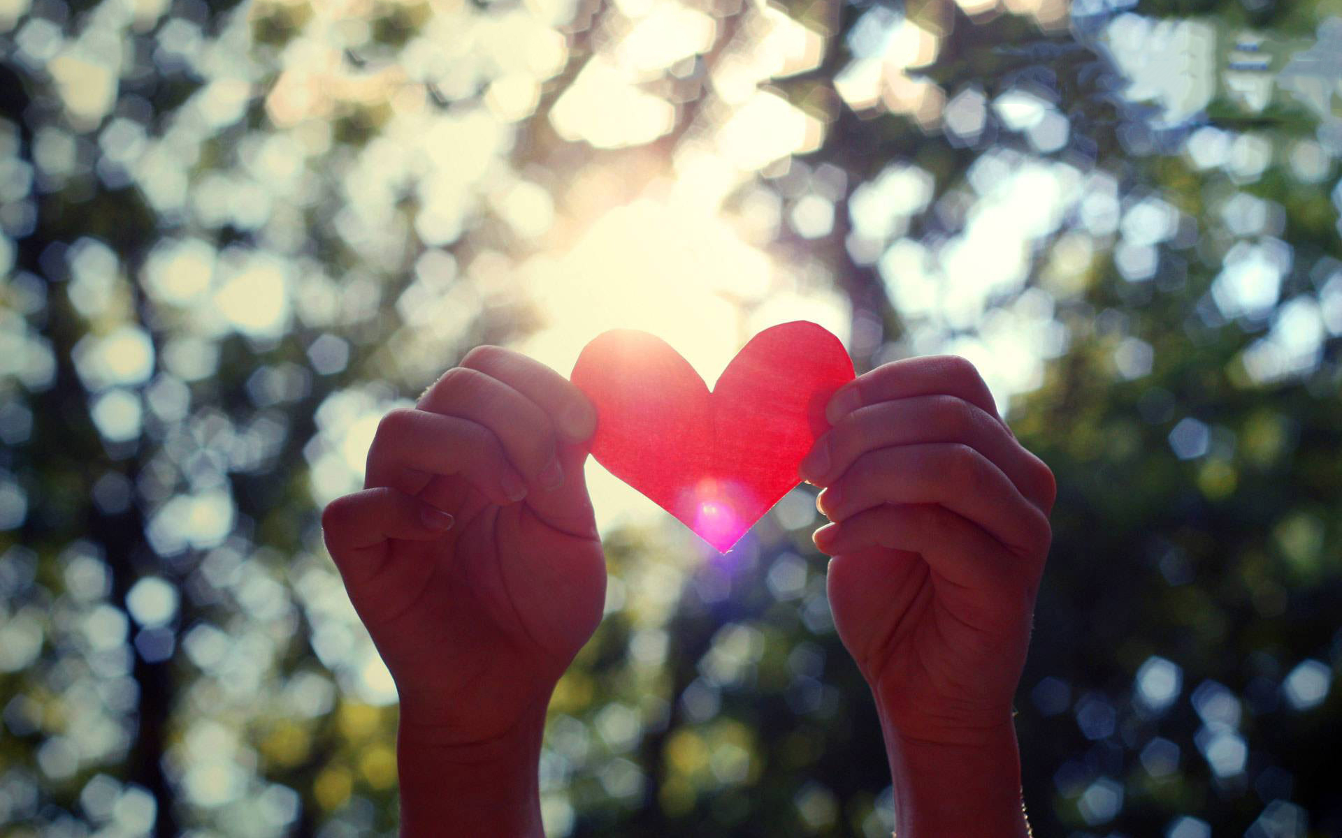 pic-Love-Heart-Hands