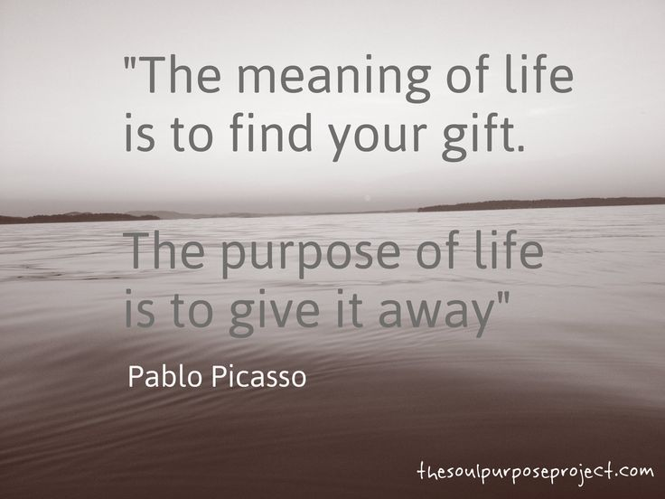 a39711c8f9c653600db7374d8272a8bf--purpose-of-life-quotes-quotes-pics