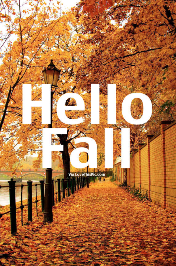Nice 20 Happy Fall Quotes 5564 7
