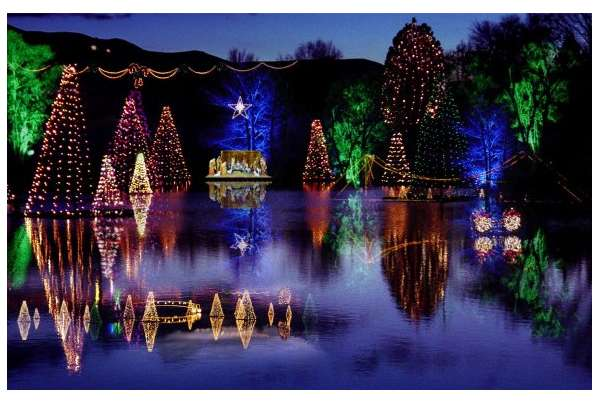 pond-town-christmas-lights_f3d882cd-5056-a36a-0ba8bf7ba2cedcb8